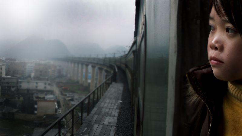 Last-train-home-lixin-fan-zhang-qin