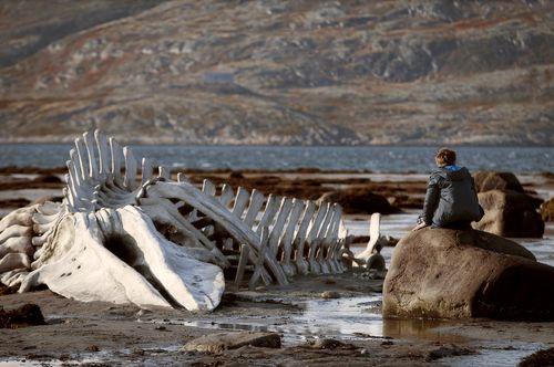 Leviathan-movie-review-sergey-pokhodaev