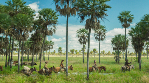 Zama-movie-review-daniel-giménez-cacho